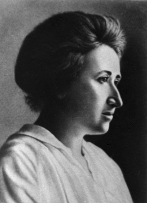 Rosa Luxemburgo Pensador