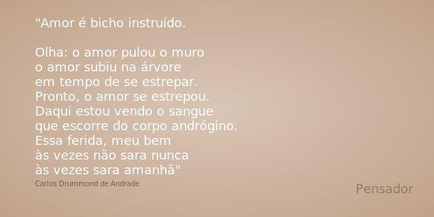Amor é bicho instruído. Olha: o amor pulou o muro o amor subiu na árvore em tempo de se estrepar. Pronto, o amor se estrepou. Daqui estou vendo o sangue que esc... Frase de Carlos Drummond de Andrade.