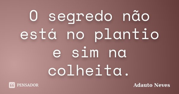 O segredo não está no plantio e sim na colheita.... Frase de Adauto Neves.