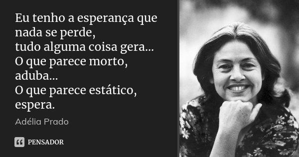 Eu tenho a esperança que nada se perde, tudo alguma coisa gera... O que parece morto, aduba... O que parece estático, espera.... Frase de Adélia Prado.