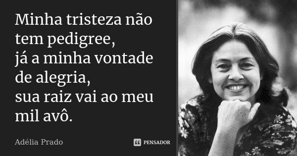 Minha tristeza não tem pedigree, já a minha vontade de alegria, sua raiz vai ao meu mil avô.... Frase de Adélia Prado.