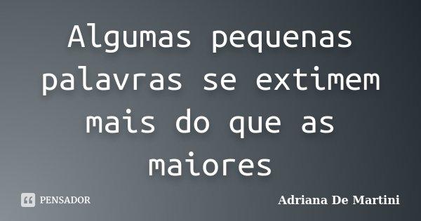 Algumas pequenas palavras se extimem mais do que as maiores... Frase de Adriana De Martini.