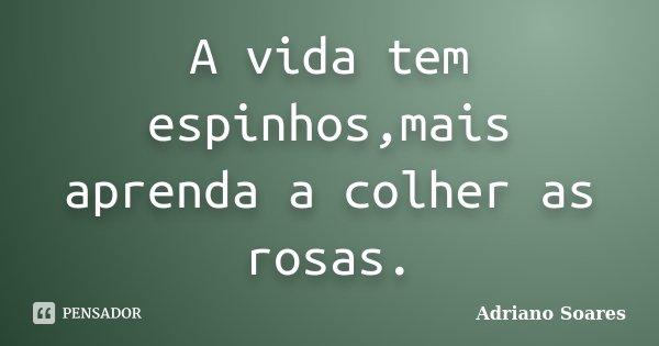 A vida tem espinhos,mais aprenda a colher as rosas.... Frase de Adriano Soares.