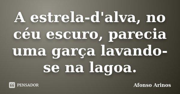 A estrela-d'alva, no céu escuro, parecia uma garça lavando-se na lagoa.... Frase de Afonso Arinos.