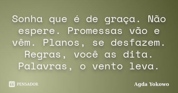 Sonha que é de graça. Não espere. Promessas vão e vêm. Planos, se desfazem. Regras, você as dita. Palavras, o vento leva.... Frase de Agda Yokowo.