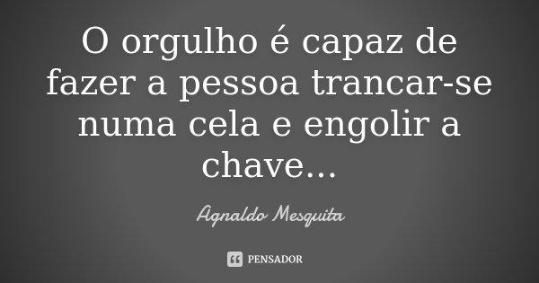 O orgulho é capaz de fazer a pessoa trancar-se numa cela e engolir a chave...... Frase de Agnaldo Mesquita.