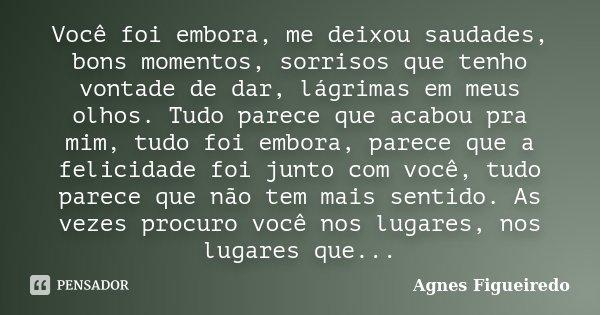 Você Foi Embora, Me Deixou Saudades,... Agnes Figueiredo