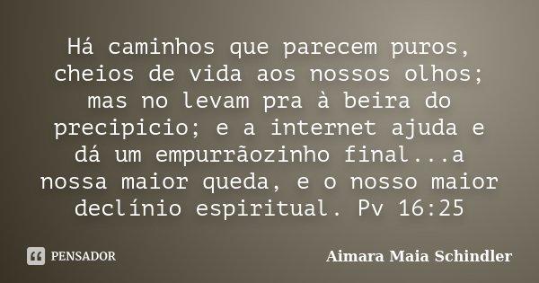 Há caminhos que parecem puros, cheios de vida aos nossos olhos; mas no levam pra à beira do precipicio; e a internet ajuda e dá um empurrãozinho final...a nossa... Frase de Aimara Maia Schindler.
