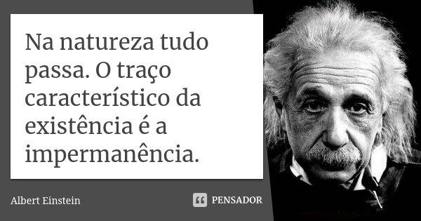 Na natureza tudo passa. O traço característico da existência é a impermanência.... Frase de Albert Einstein.