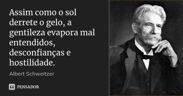 Assim como o sol derrete o gelo, a gentileza evapora mal entendidos, desconfianças e hostilidade.... Frase de Albert Schweitzer.