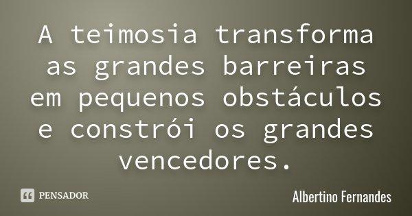 A teimosia transforma as grandes barreiras em pequenos obstáculos e constrói os grandes vencedores.... Frase de Albertino Fernandes.