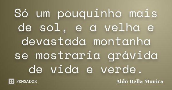 Só um pouquinho mais de sol, e a velha e devastada montanha se mostraria grávida de vida e verde... Frase de Aldo Della Monica.