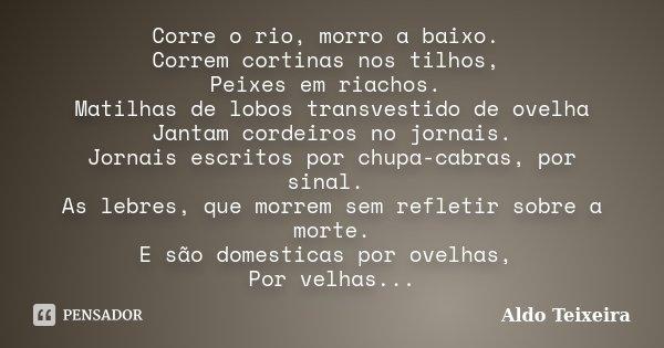 Corre O Rio Morro A Baixo Correm Aldo Teixeira
