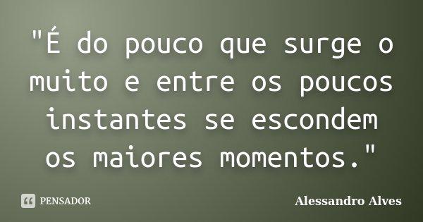 """""""É do pouco que surge o muito e entre os poucos instantes se escondem os maiores momentos.""""... Frase de Alessandro Alves."""