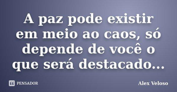 A paz pode existir em meio ao caos, só depende de você o que será destacado...... Frase de Alex Veloso.