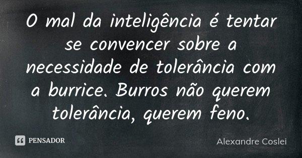 O mal da inteligência é tentar se convencer sobre a necessidade de tolerância com a burrice. Burros não querem tolerância, querem feno.... Frase de Alexandre Coslei.