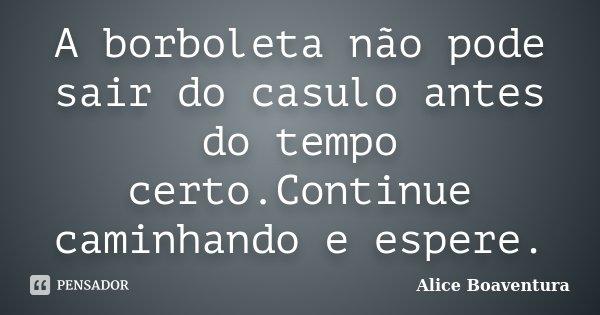 A borboleta não pode sair do casulo antes do tempo certo.Continue caminhando e espere.... Frase de Alice Boaventura.
