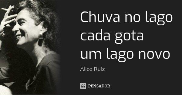 Chuva no lago cada gota um lago novo... Frase de Alice Ruiz.