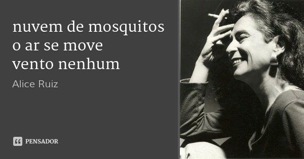 nuvem de mosquitos o ar se move vento nenhum... Frase de Alice Ruiz.