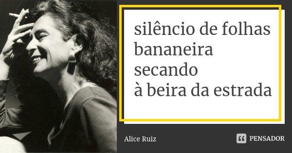 silêncio de folhas bananeira secando à beira da estrada... Frase de Alice Ruiz.