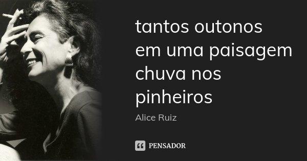 tantos outonos em uma paisagem chuva nos pinheiros... Frase de Alice Ruiz.