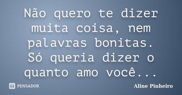 Não quero te dizer muita coisa, nem palavras bonitas. Só queria dizer o quanto amo você...... Frase de Aline Pinheiro.