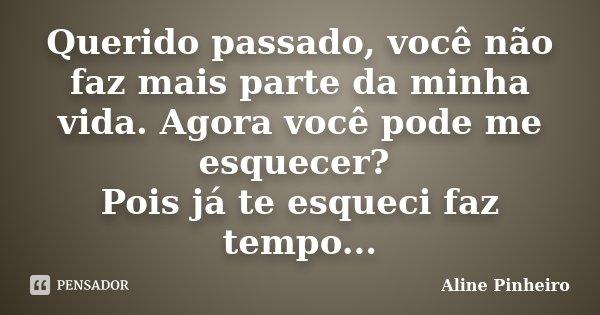 Querido passado, você não faz mais parte da minha vida. Agora você pode me esquecer? Pois já te esqueci faz tempo...... Frase de Aline Pinheiro.
