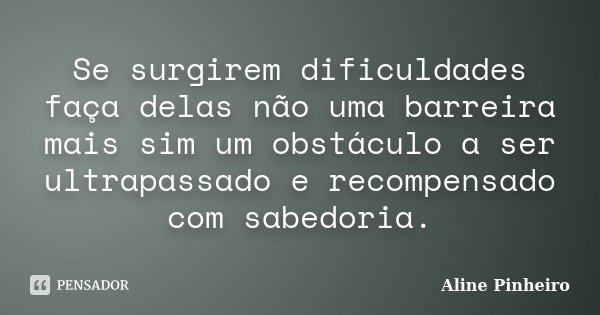 Se surgirem dificuldades faça delas não uma barreira mais sim um obstáculo a ser ultrapassado e recompensado com sabedoria.... Frase de Aline Pinheiro.