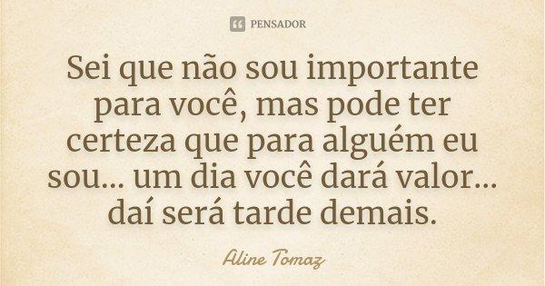 Sei que não sou importante para você, mas pode ter certeza que para alguém eu sou...um dia você dará valor.. daí será tarde demais.... Frase de Aline Tomaz.