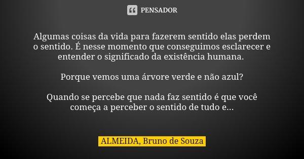 Algumas coisas da vida para fazerem sentido elas perdem o sentido. É nesse momento que conseguimos esclarecer e entender o significado da existência humana. Por... Frase de ALMEIDA, Bruno de Souza.