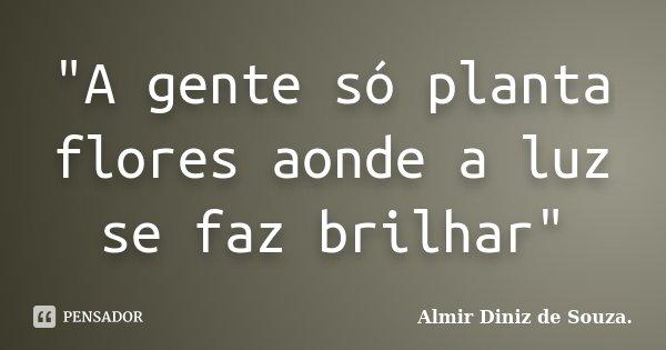 """""""A gente só planta flores aonde a luz se faz brilhar""""... Frase de Almir Diniz de Souza."""