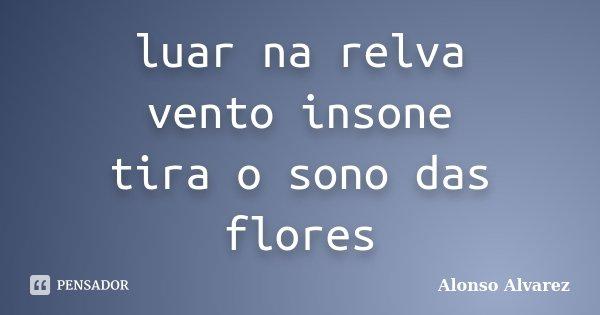 luar na relva vento insone tira o sono das flores... Frase de Alonso Alvarez.