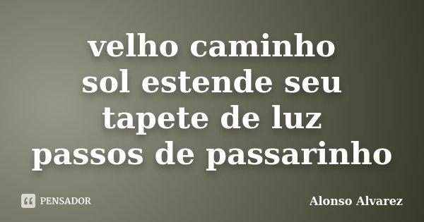 velho caminho sol estende seu tapete de luz passos de passarinho... Frase de Alonso Alvarez.