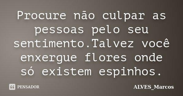 Procure não culpar as pessoas pelo seu sentimento.Talvez você enxergue flores onde só existem espinhos.... Frase de ALVES_Marcos.