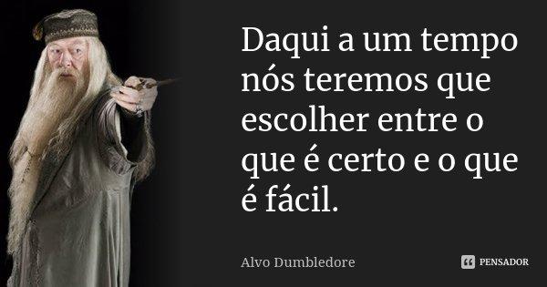 Daqui a um tempo nós teremos que escolher entre o que é certo e o que é fácil.... Frase de Alvo Dumbledore.