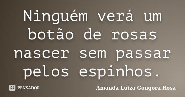 Ninguém verá um botão de rosas nascer sem passar pelos espinhos.... Frase de Amanda Luiza Gongora Rosa.