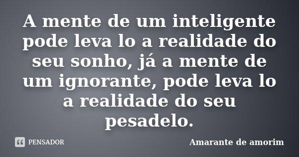 A mente de um inteligente pode leva lo a realidade do seu sonho, já a mente de um ignorante, pode leva lo a realidade do seu pesadelo.... Frase de Amarante de Amorim.
