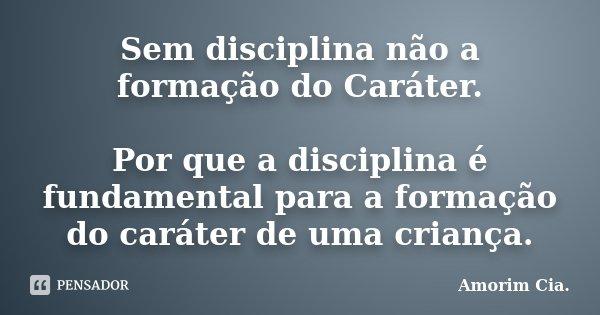 Sem disciplina não a formação do Caráter. Por que a disciplina é fundamental para a formação do caráter de uma criança.... Frase de Amorim Cia..