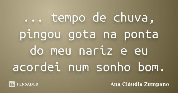 ... tempo de chuva, pingou gota na ponta do meu nariz e eu acordei num sonho bom.... Frase de Ana Cláudia Zumpano.