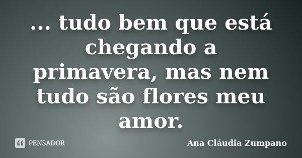 ... tudo bem que está chegando a primavera, mas nem tudo são flores meu amor.... Frase de Ana Cláudia Zumpano.