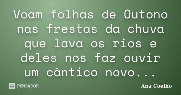 Voam folhas de Outono nas frestas da chuva que lava os rios e deles nos faz ouvir um cântico novo...... Frase de Ana Coelho.