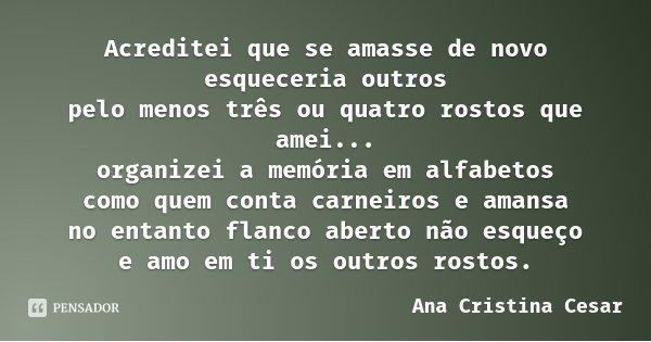 Acreditei que se amasse de novo esqueceria outros pelo menos três ou quatro rostos que amei... organizei a memória em alfabetos como quem conta carneiros e aman... Frase de Ana Cristina César.