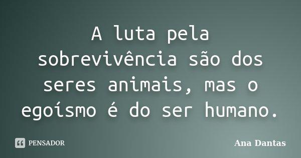 A luta pela sobrevivência são dos seres animais, mas o egoísmo é do ser humano.... Frase de Ana Dantas.
