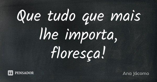 Que tudo que mais lhe importa, floresça!... Frase de Ana Jácomo.