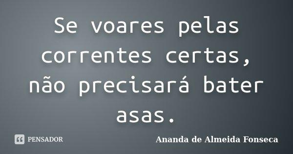 Se voares pelas correntes certas, não precisará bater asas.... Frase de Ananda de Almeida Fonseca.