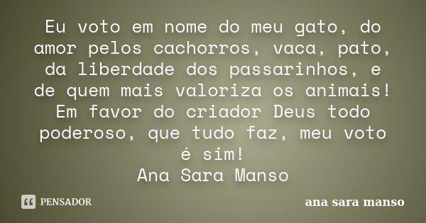 Eu Voto Em Nome Do Meu Gato Do Amor Ana Sara Manso
