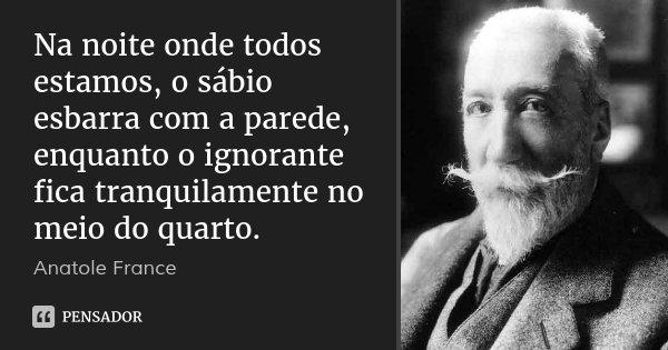 Na noite onde todos estamos, o sábio esbarra com a parede, enquanto o ignorante fica tranquilamente no meio do quarto.... Frase de Anatole France.
