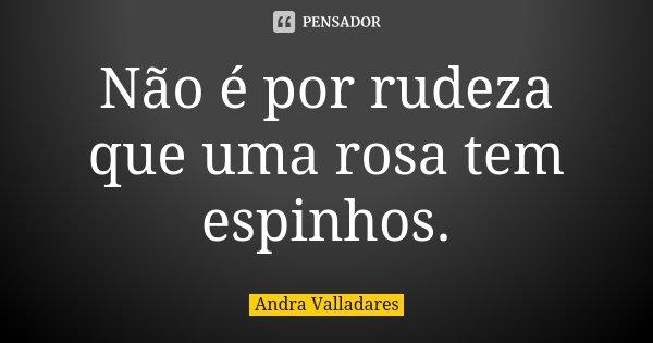 Não é por rudeza que uma rosa tem espinhos.... Frase de Andra Valladares.
