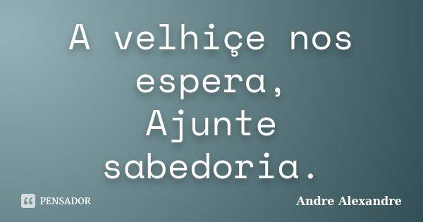 A velhiçe nos espera, Ajunte sabedoria.... Frase de Andre Alexandre.