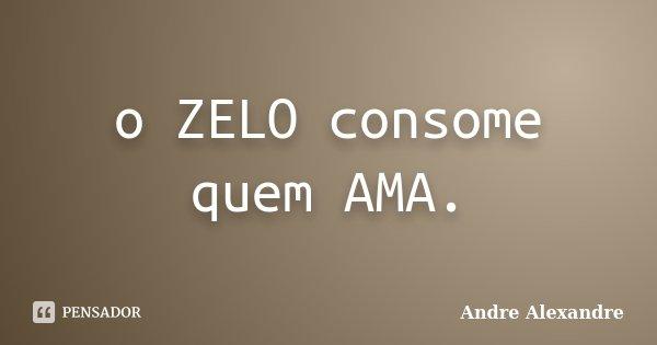 o ZELO consome quem AMA.... Frase de Andre Alexandre.